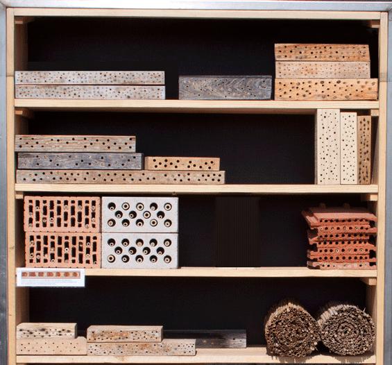 bambusroehrchen für insektenhotel